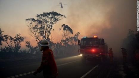 Australia bush fire crisis eases, but firefighters warn fight isn't over   bushfires in Australia   Scoop.it