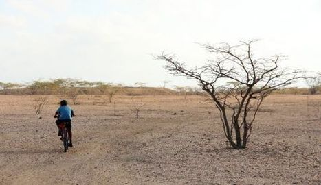 La peor sequía en casi dos décadas sacude a Colombia | NOTICIAS CIENCIAS SOCIALES NSD | Scoop.it