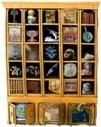 Un cabinet de curiosités en classe de 5ème - La Page des Lettres   RéciTIC   Scoop.it