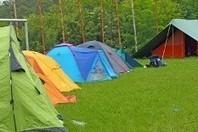 themavision.fr - Un sondage sur les Français et le camping réalisé par Camping and Co   Tourisme news   Scoop.it