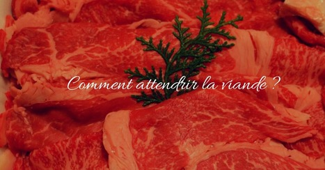 Comment attendrir la viande - Essor | Cuisine et cuisiniers | Scoop.it
