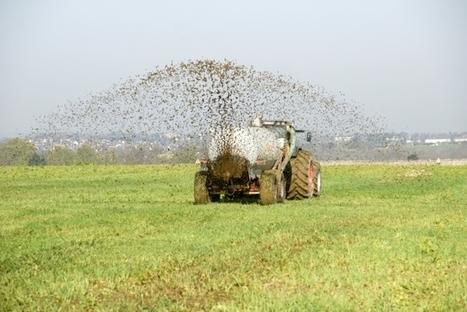 Le phosphore : une ressource limitée et un enjeu planétaire pour l'agriculture du 21ème siècle | Questions de développement ... | Scoop.it