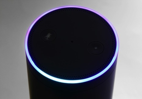Amazon Echo Steps Up Literary Chops | PYMNTS.com | Access Control Systems | Scoop.it