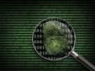 Rabobank werft 230 IT'ers tegen cybercrime | ICT-inzet bij ondernemingen | Scoop.it
