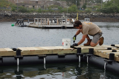 UNH-led team designs aquaculture raft to provide four-season source of seafood and sea veggies   Aquaculture Directory   Scoop.it