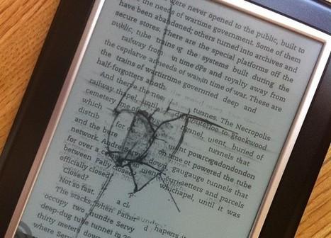 La fin du lecteur ebook : un 'alarmant déclin' à relativiser | Master LiMés | Scoop.it