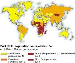 L'agriculture en Afrique  : Quelles solutions pour lutter contre la FAIM? | La pollution urbaine en AFRIQUE | Scoop.it