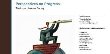 Report: Impact Investing To Grow 12% in 2013   Sustainable Brands   Social enterprise internationally   Scoop.it
