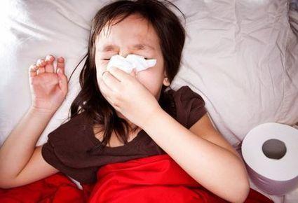 Combattere l'influenza ed il raffreddore a tutte le età: alla scoperta dei Funghi ed il Beta-Glucano   L'Energia delle Piante salute e benessere secondo natura   Scoop.it