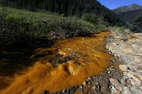 Despite All-Clear From EPA, New Studies Show Lingering Contamination After #Animas River Spill | Messenger for mother Earth | Scoop.it