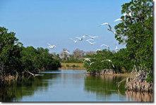 Restoration Planning and Permitting - Lake Okeechobee - Florida DEP | The Everglades Puzzle | Scoop.it