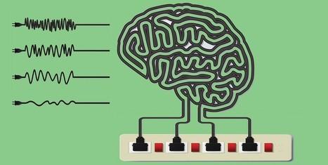 Neuroscience on a Budget - Braindecoder | Towards to the Dark Side: 10, 9, 8, 7.... | Scoop.it