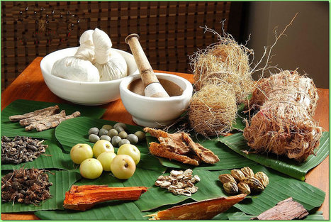 Kerala Ayurveda packages | Kerala the exotic trip God's own Country | Scoop.it