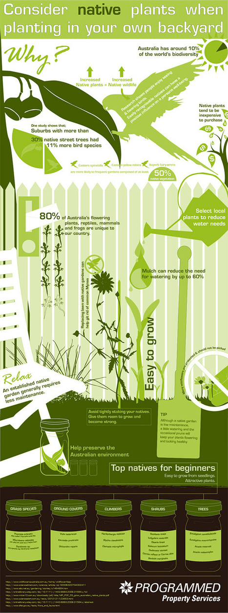 Benefits of Planting Australian Natives in Your Own Backyard [Infographic] | Programmed Property Services | infographic | Scoop.it