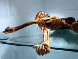Ötzi the ice mummy's secrets found in DNA - life - 28 February 2012 - New Scientist | Otzi the Iceman | Scoop.it