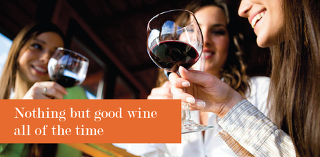Dusty Buzzard Wines - Online Wine Sales and Store | Using The Internet To Find Fantastic Online Wine Deals | Scoop.it