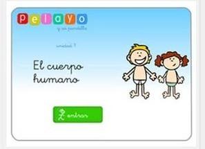 Vídeos didácticos para conocer el cuerpo humano... | Educacion y formación | Scoop.it