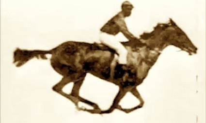 ::: Equine Gait Analysis: The Ghost of Muybridge's Racehorse Gallops Again | The Art of the Horse | Scoop.it