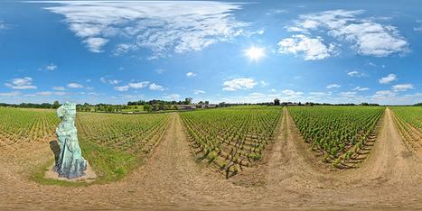 Art dans les vignes du château Smith-Haut-Lafitte à Martillac - France Par Pascal Moulin Photographe - Panorama 360 x 180° au mât télescopique (hauteur 5 mètres) | moulin360panoramic | Scoop.it