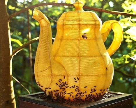 Artist Partners with 60,000 Bees to Form Splendid Teapot Sculpture | Inspiration: Imagine. See the possibilities. | Scoop.it