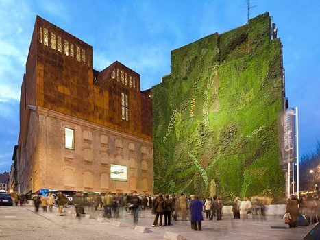 Pictures: Green Walls May Cut Pollution in Cities | Leading for Nature | Scoop.it