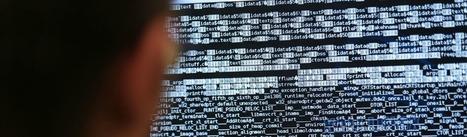 Quand les pirates se lancent dans la franchise de virus | Techniques de l'ingénieur | Trucs et bitonios hors sujet...ou presque | Scoop.it