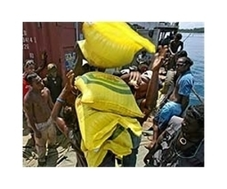 Scramble to reach tsunami-hit villages in Solomons | Sustain Our Earth | Scoop.it