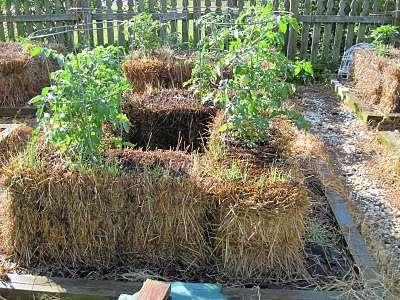 Comment faire son potager sur bottes de paille ? | pour mon jardin | Scoop.it