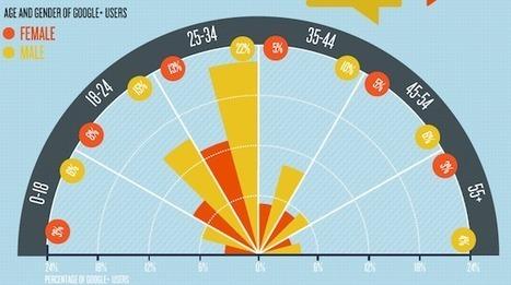 [Infographie] Qui sont les utilisateurs de Google + ? | Webmaster France | Scoop.it