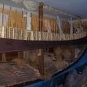 Los cretenses descubrieron América miles de años antes de Colón | Absolut Grecia | Mitología | Scoop.it