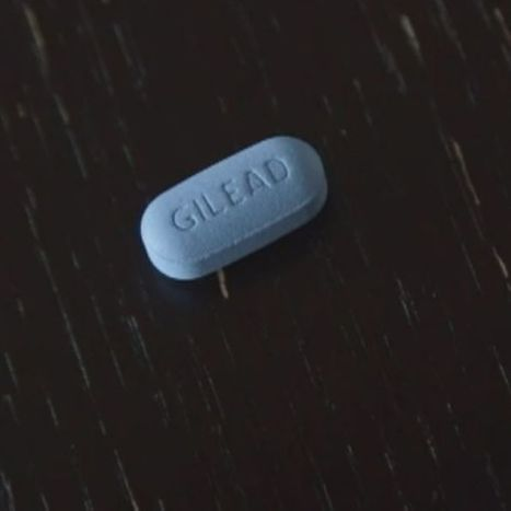 AIDS Council pushes for HIV prevention drug trials | Gay News | Scoop.it