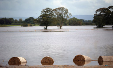Lack of flood protection spending threatening UK food security, say MPs | Food security | Scoop.it