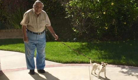90-Year-Old Man Breaks the Internet With Sweet Photos of His New Adopted Dog   Animal Empathy & Natural Pet Care   Scoop.it