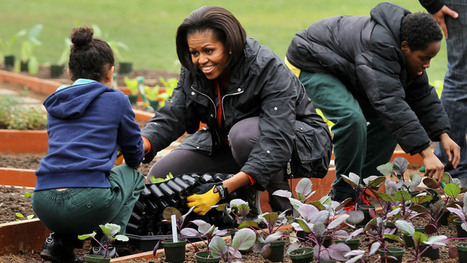 First Lady: Let's Move Fruits And Veggies To 'Food Deserts' | Food and Nutrition | Scoop.it