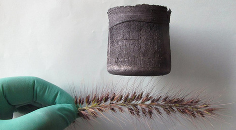 Graphene aerogel is seven times lighter than air, can balance on a blade of grass - Slideshow | ExtremeTech | SMART INNOVATIONS | Scoop.it