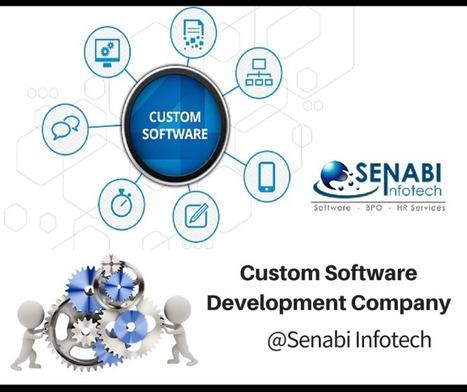 Advantages of Implementing Custom Software Development Company In Gujarat | SENABI Infotech Limited | Scoop.it