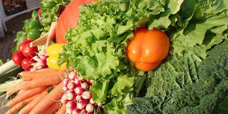 Vous dépensez 100euros dans l'alimentaire, combien vont aux agriculteurs? - Le Monde | Le Fil @gricole | Scoop.it