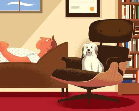 El poder terapéutico de los perros | I didn't know it was impossible.. and I did it :-) - No sabia que era imposible.. y lo hice :-) | Scoop.it