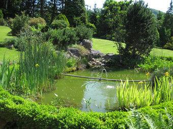 Jardiner, c'est cultiver son bonheur   pour mon jardin   Scoop.it