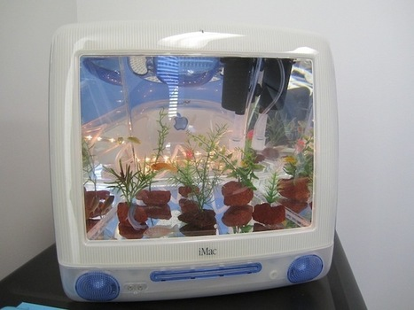 Radical Upcycled iMac Aquariums for Fish & Tech Enthusiasts | Aquaculture | Scoop.it