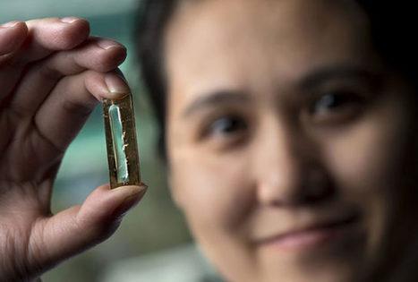 Elle a créé par accident une nouvelle batterie révolutionnaire | Innovation & Technology | Scoop.it