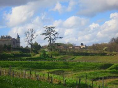2012 Bordeaux in Barrel Report, What to Expect from the Wine | wines and spirits | Scoop.it