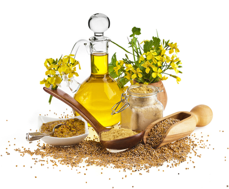 An Herb For Thought: Mustard   TheSleuthJournal   North and South America   Scoop.it