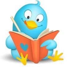 Tweet class o como evaluar en redes: | herramientas de la web 2.0 | Scoop.it