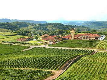 Miolo, Brazil | South American Wines Online | Scoop.it