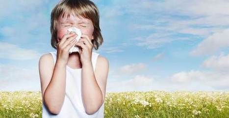 Antistaminici naturali: 10 rimedi alle allergie | Benessere Naturale | Scoop.it