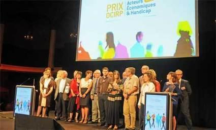 Prix OCIRP Acteurs Economiques & Handicap 2014 : jusqu'au 23 mars pour tenter votre chance ! | le handicap dans notre société, accessibilité et règlementation. | Scoop.it