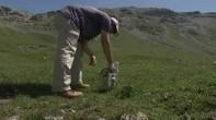 [Video] Les Alpes encore contaminées par le nuage de Tchernobyl | Biodiversité | Scoop.it