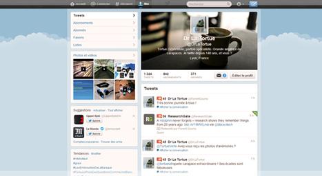 L'utilisation de Twitter par les professionnels de santé : Avantages, risques, astuces. | Ochelys | Memoire idee-ources | Scoop.it