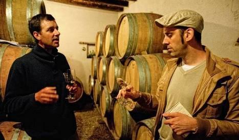 Oenologue, sommelier, maître de chai… Les métiers du vin recrutent ! | Wino Geek | Scoop.it